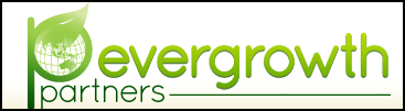 evergrowth partners offer business support and value add services